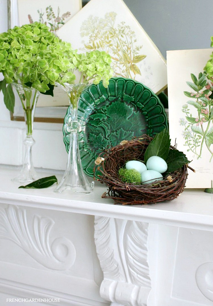 Design a spring mantel with green hydrangeas