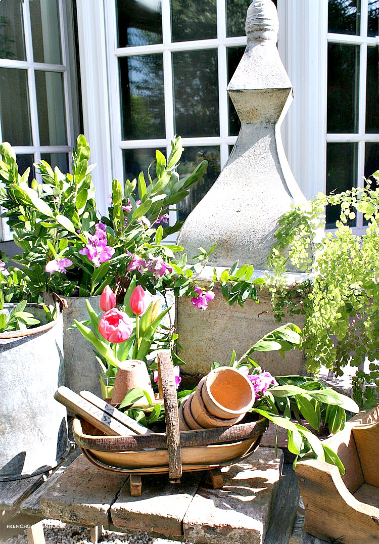 Our Garden Update
