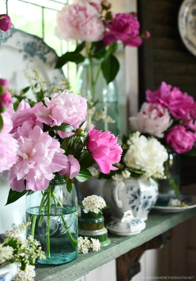 peonies for summer
