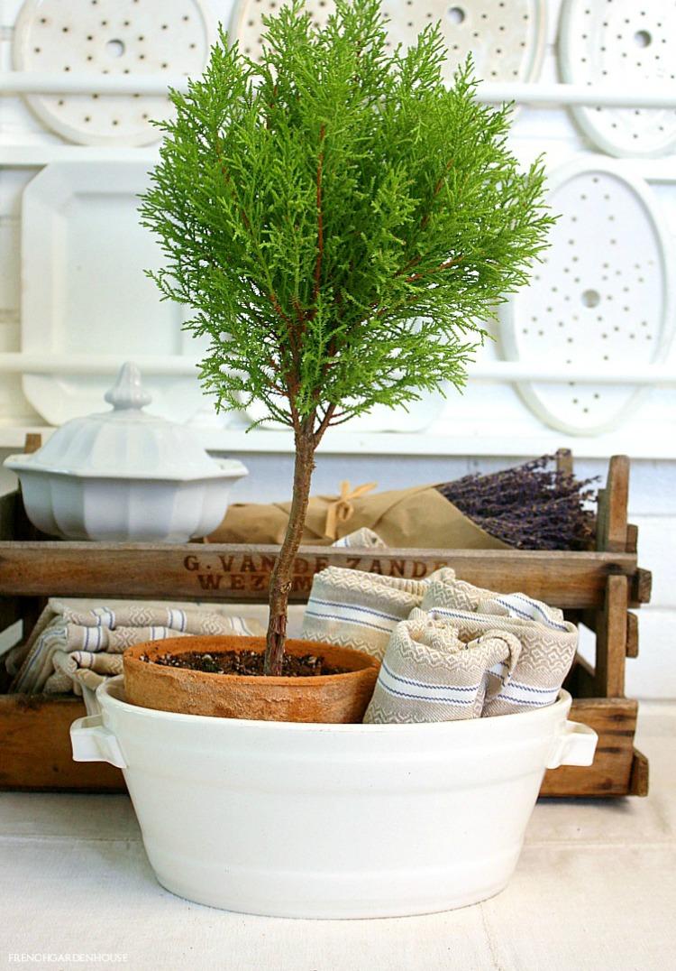 tips for shopping for Ironstone