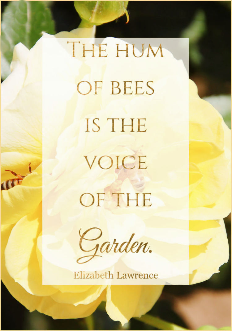 bee quote
