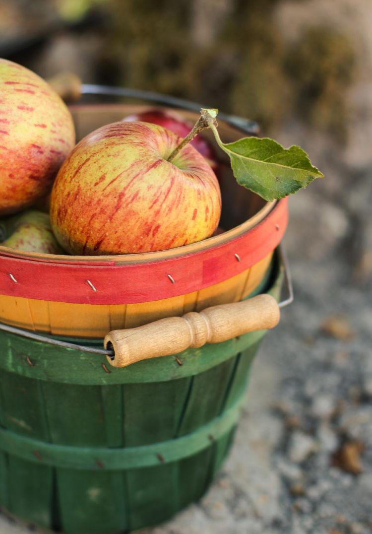 Best Caramel Cheesecake Baked Apples