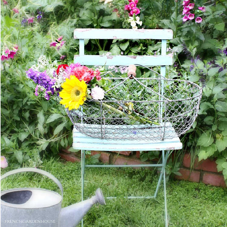metal french harvesting basket