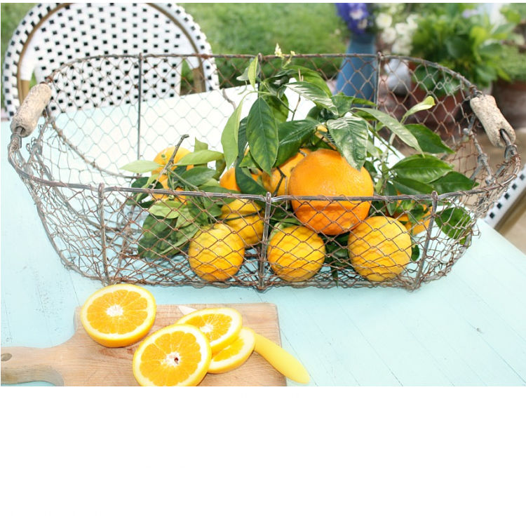 antique wire basket with oranges