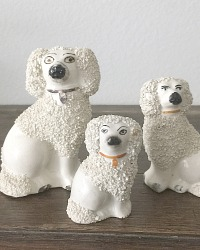 Antique English Staffordshire White Poodle Dogs Family