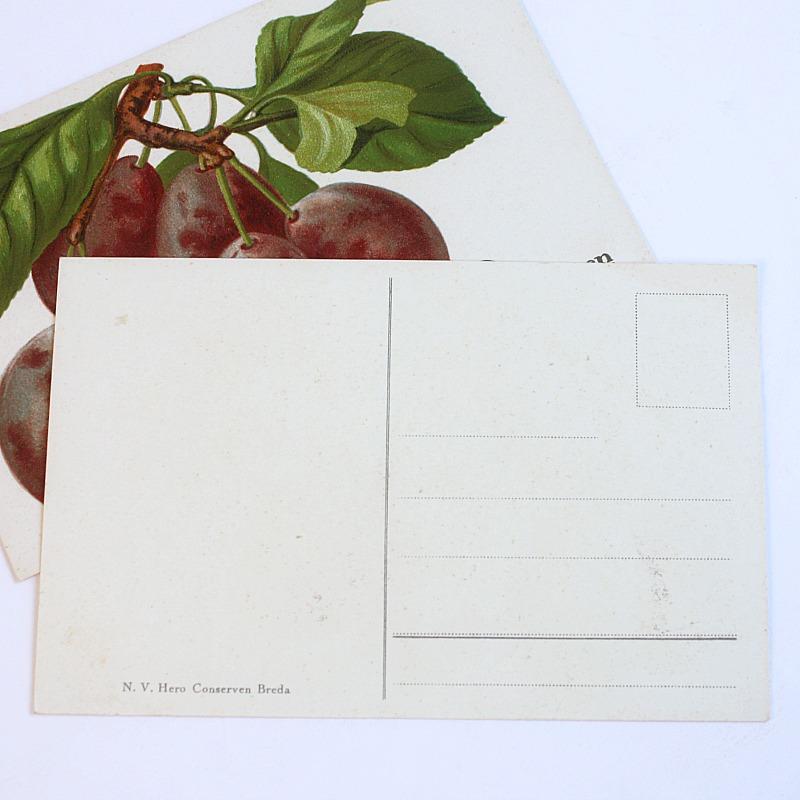 Antique Chromolithograph Fruit Postcard Set of 2 Plums