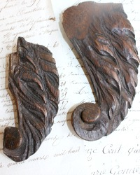 Antique Hand Carved Angel Wing Fragments