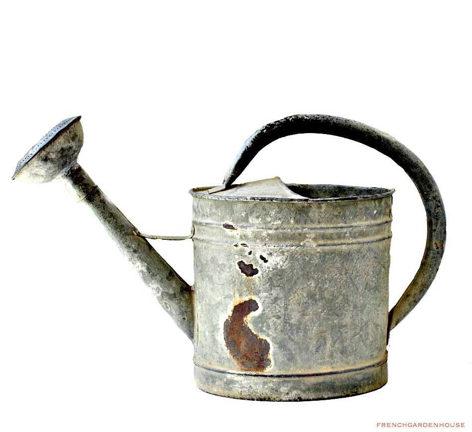 Antique french watering can - Sprinkling cans ...
