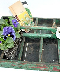 Antique Painted Seed Carrier