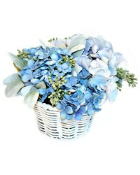 Exquisite Seaside Blue Hydrangea Arrangement
