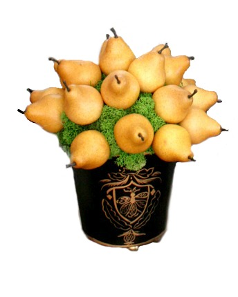 French Pear Topiary in Tole Pot
