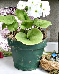 Vintage French Greenhouse Terre Cuite Pottery Pot GREEN