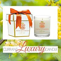 French Green Currant Berries and Apple Luxury Candle