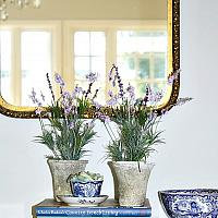 French Country Lavande Topiary Set of 2