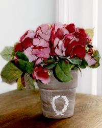 Merlot Garden Hydrangea Arrangement