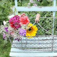 Vintage Farm Gathering Basket