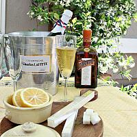 Luxury Lemon Cocktail Cubes for French 75