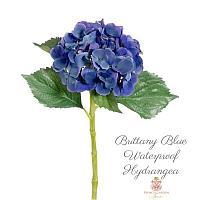 Hydrangea Stems Brittany Blue