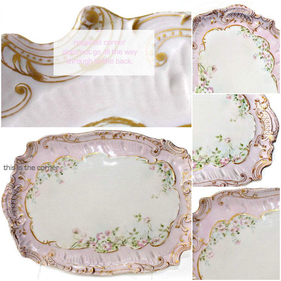 Antique French Limoges Hand Painted Porcelain Ice Cream Tray