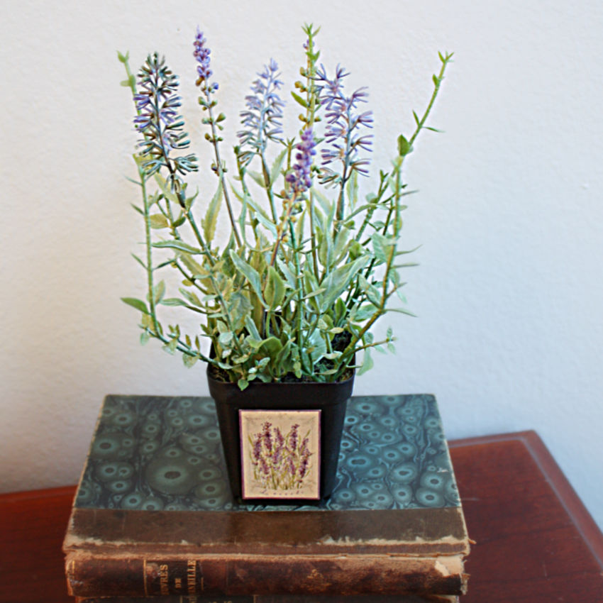 Petite Grower's Faux French Lavender Pot
