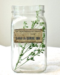 Vintage French Glass Apothecary Jar Sulfate de Quinine