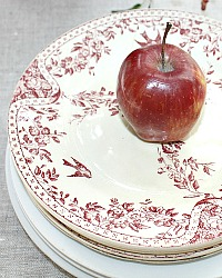 Antique French Red Bird Transferware Plate Set of 4