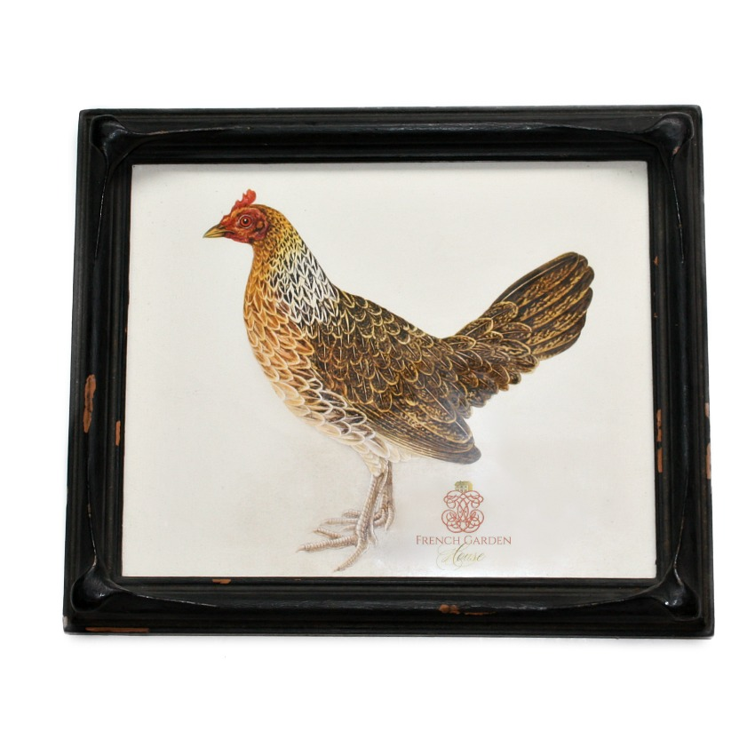 Antique French Country Framed Chicken Fowl