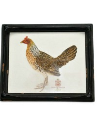 Antique French Country Framed Chicken Single