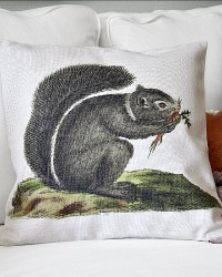 Squirrel Throw Pillow Cover