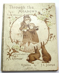 Rare Antique Children's Book Through The Meadows Full Color Chromolithographs M.E. Edwards