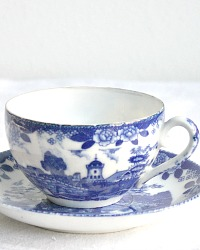 Vintage Blue and White Chinoiserie Porcelain Tea Cup and Saucer