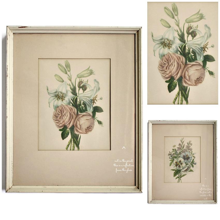 Vintage Cottage Garden Botanical Framed Prints Set of 2