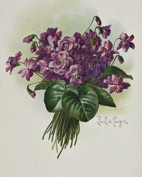 Antique Violets Floral Chromolithograph Print Paul de Longpre Nosegay