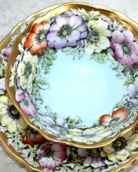 Vintage Paragon Cabinet Bone China Teacup Wild Anemone