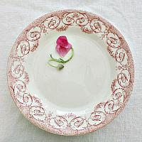 French Ironstone Creil et Montereau Plate Red Bows