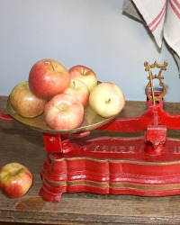 Antique French Country Red Painted Scale