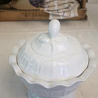 19th Century Staffordshire Ironstone Round Footed Tureen with Lid