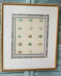 Antique Estate Egg Print in Wood Frame Thrush