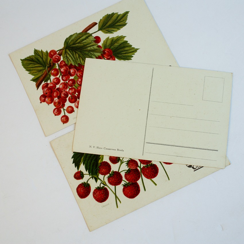 Antique Chromolithograph Berries Postcard Set of 3