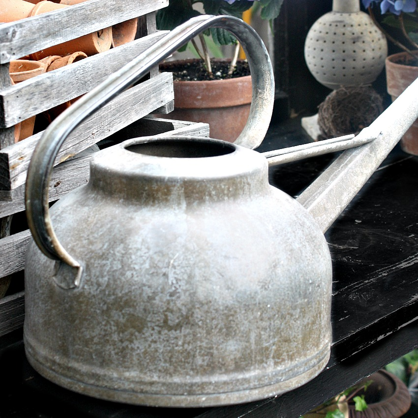 Antique Estate Zinc Watering Can with Long Spout and Rose
