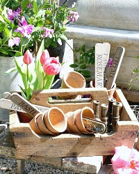 Antique French Country Wood Garden Seed Carrier