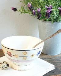 Antique Cafe Au Lait Bowl with Country Stars