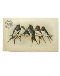 Antique Sewing Machines Trade Card with Birds