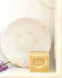 Antique Ironstone Plate with French Cube Soap