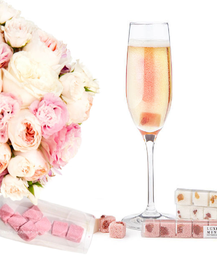 Champagne Cocktail Cubes Gift Set