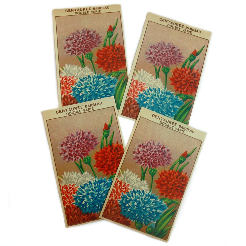 Antique French Chromolithograph Garden Centauree Seed Labels Set of 4