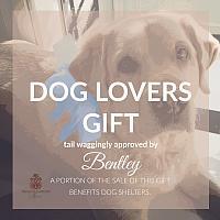 Dog Lovers Gift Set Spaniels