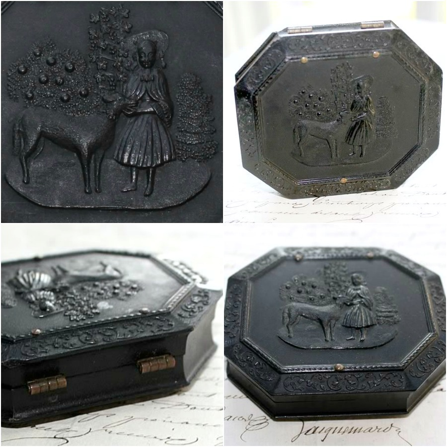 Antique Daguerreotype Case Girl and Dog