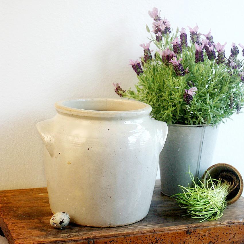 French Pot en Gres Enameled Brittany Preserving Jar