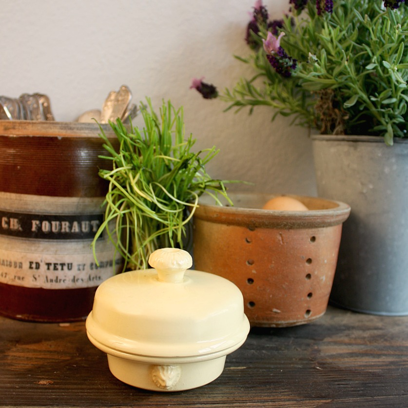 French Foie Gras Container Provence Gold